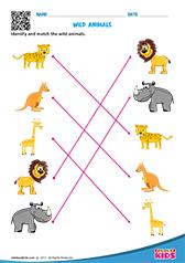 Science Wild Animals worksheets Kindergarten