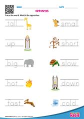 math worksheet : english opposite words worksheets kindergarten : Opposites Worksheets Kindergarten