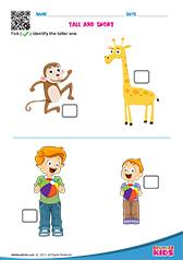 math worksheet : math tall and short worksheets kindergarten : Long And Short Worksheets For Kindergarten