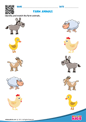 math worksheet : science farm animals worksheets kindergarten : Farm Animals Worksheets Kindergarten