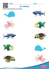 math worksheet : science sea animals worksheets kindergarten : Water Worksheets For Kindergarten