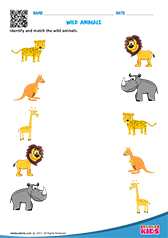 math worksheet : science wild animals worksheets kindergarten : Kindergarten Animal Worksheets
