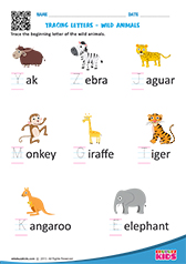 math worksheet : science wild animals worksheets kindergarten : Animal Worksheets For Kindergarten