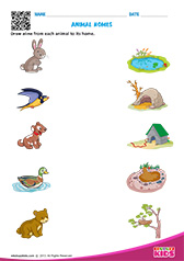 Printables Pre K Science Worksheets science animal homes worksheets pre k homes