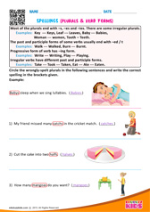 Plurals & Verb Forms